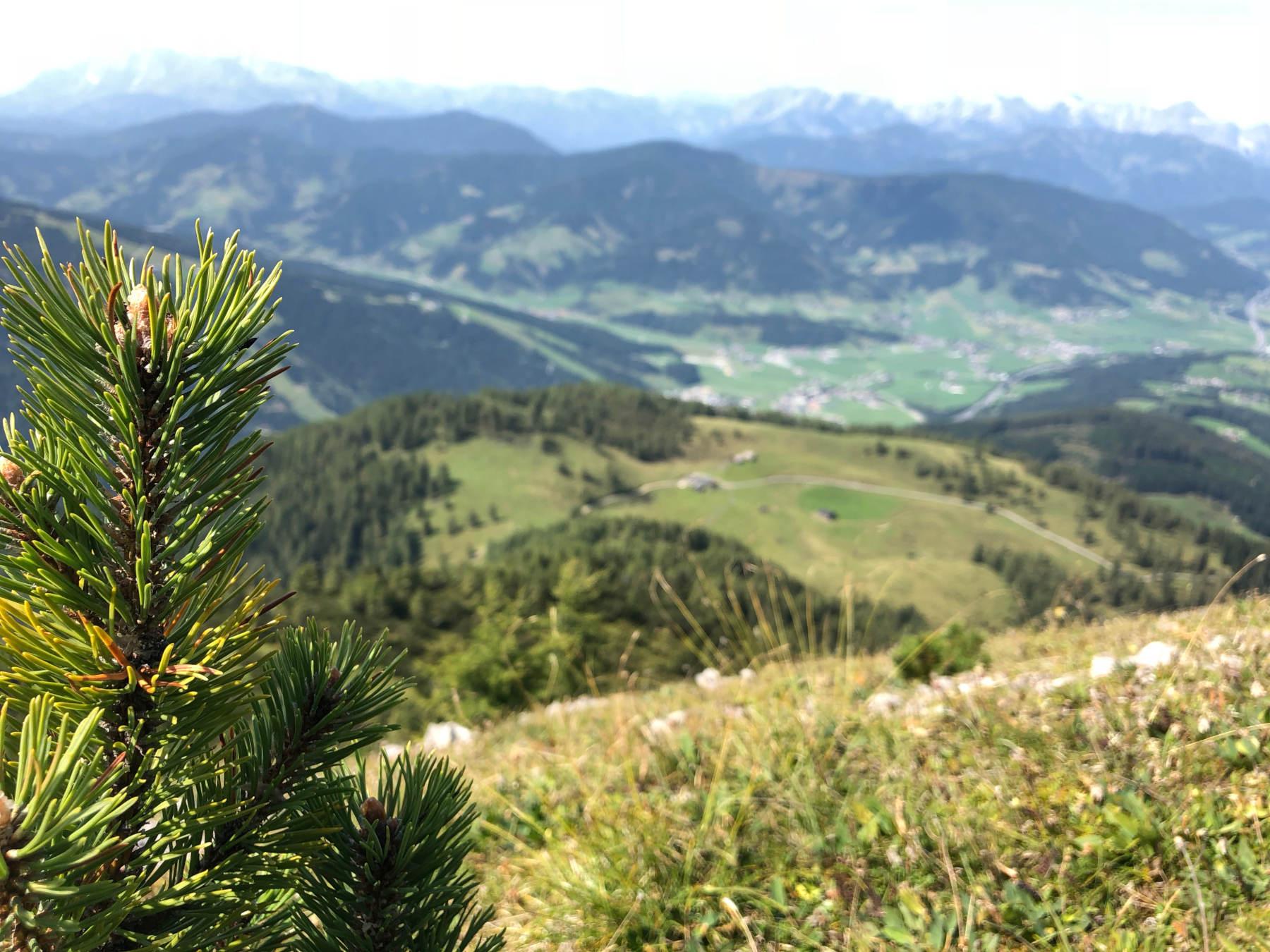 Wanderung auf den Lackenkogel Flachau Salzburg Österreich